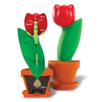 http://www.tangrammontessori.fr/3471-thickbox/tangram-avec-modeles-orange-rose.jpg