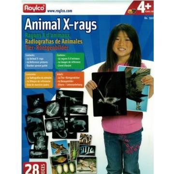 http://www.tangrammontessori.fr/3495-thickbox/3-puzzles-animaux.jpg